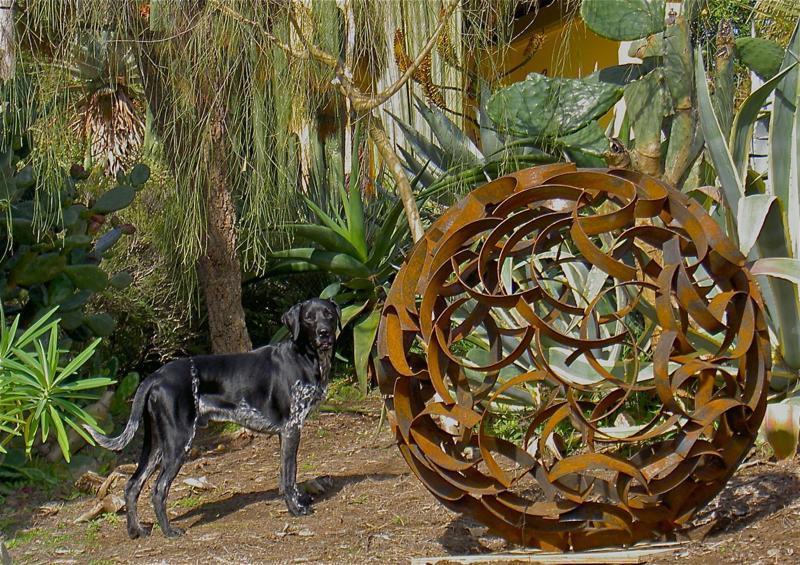 San Diego style gardening Ivan McLean
